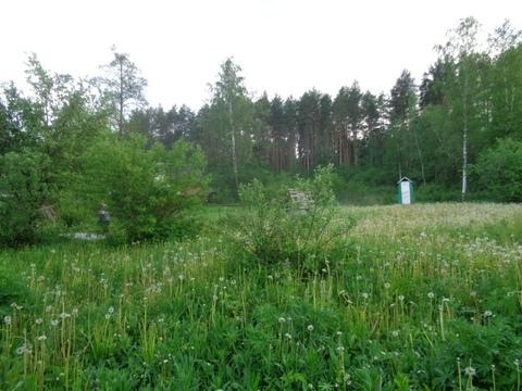 Дача Дроздово 12 соток - Фото 5