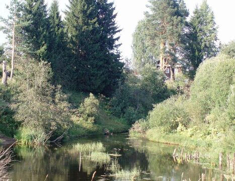 Продажа участка, Бокситогорский район - Фото 1