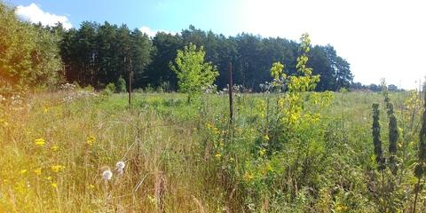 Земельный участок 14 соток в сосновом бору на берегу реки д. Айдарово - Фото 2