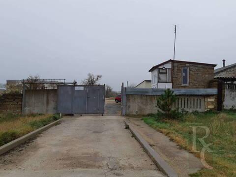 Продажа готового бизнеса, Новоандреевка, Бурлинский район - Фото 2