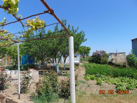 Продам добротный дом 135 кв.м. на побережье Черного моря - Фото 4