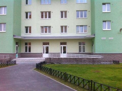 Сдам торговое помещение 384 кв.м, м. Девяткино - Фото 3