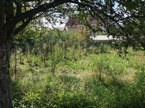 Продается участок 11 соток, 5 км от МКАД, д. Грибки - Фото 5