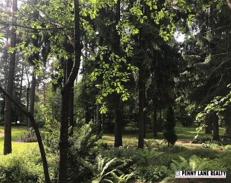 Лесной участок на берегу реки - Фото 3