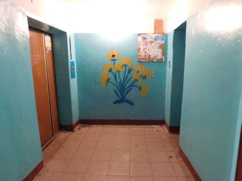 2х-комнатная квартира на ул.Павлова (49м2) - Фото 3