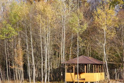 База Отдыха в пригороде Краснодара, на участке 18 300 кв.м. - Фото 2
