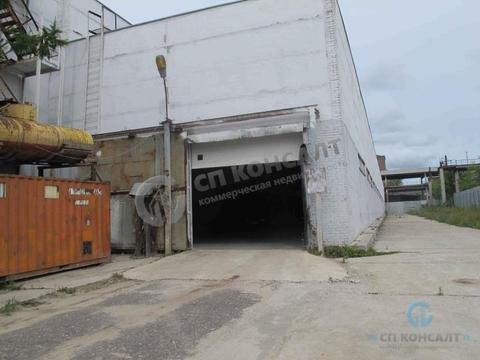 Аренда склада 100 кв.м, П.Осипенко - Фото 5