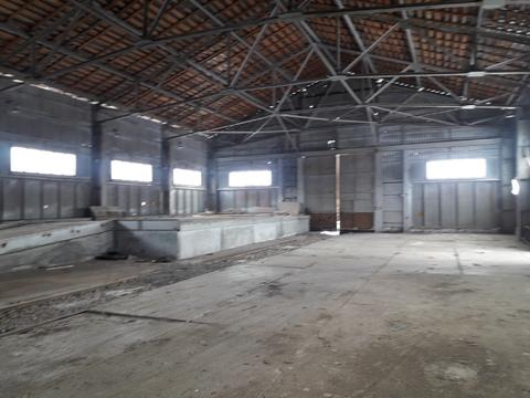 Продажа земельных участков в индустриальном парке - Фото 2