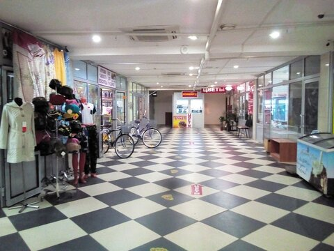 Магазин, торговая площадь, Кантемировская Царицыно, 338 кв.м, класс . - Фото 4