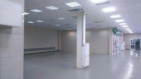 Торговое помещение в аренду от 500 кв.м - Фото 3