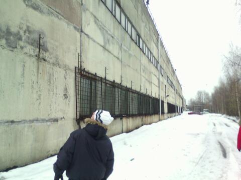 Производственно складская база в г.Санкт Петербург - Фото 3