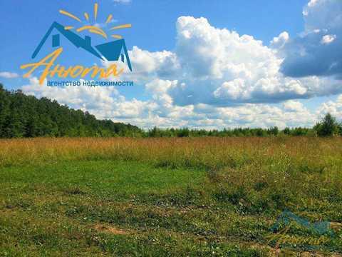 Инвестиционный проект в деревне Кабицыно на участке 3.5 га. - Фото 5