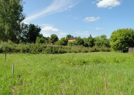 Продается земельный участок для ЛПХ - Фото 5