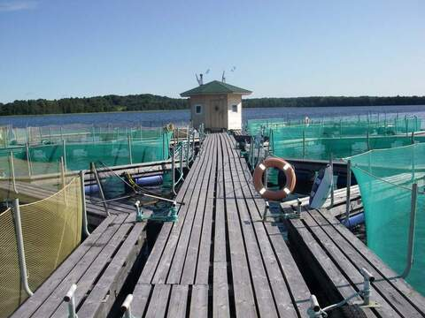 Рыбоводческое форелевое хозяйство - Фото 2