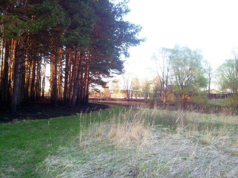 Участок 15 соток в деревне на берегу Можайского водохранилища (ПМЖ). - Фото 5