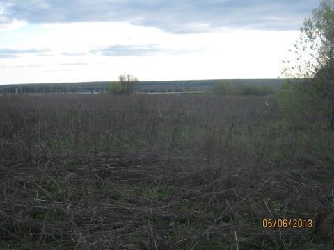 64,4 гектара в Тульской обл, 130 км от МКАД - Фото 2