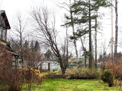 Лесной участок 17соток в пос. Загорянский, Ярославское ш. 14км от МКАД - Фото 1