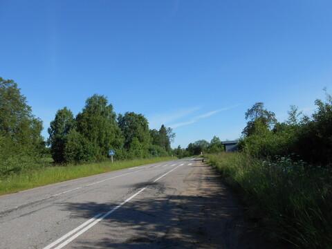Продажа земельного участка 1,2 га в Валдайском районе, д. Борисово - Фото 3