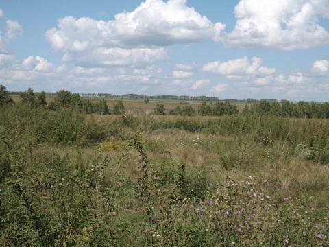 Земельный участок под ИЖС в Богословке - Фото 3