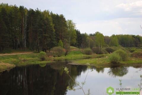 Земельный участок 10 сот. ИЖС. д.Чамерево - Фото 2
