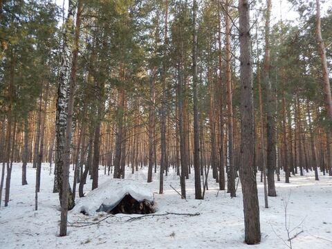Продажа участка, Кудряшовский, Новосибирский район, Брусничная - Фото 3