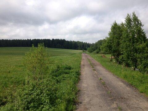 Продается участок д. Алексеевское - Фото 2