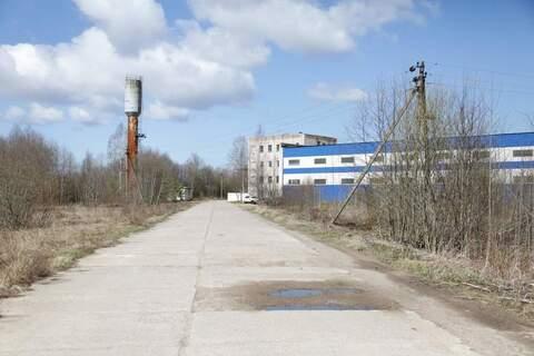 Производственный комплекс в Ленинградской обл. - Фото 1