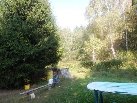 Участок 6 соток рядом с д. Субботино в лесу - Фото 3