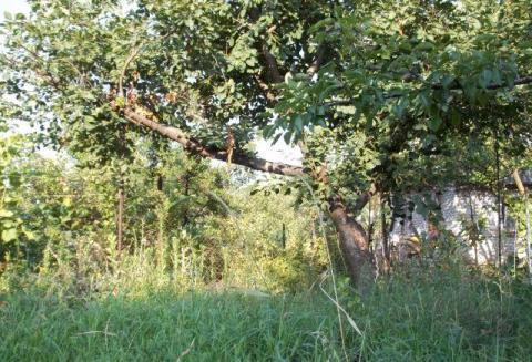 """Земельный участок в г.Таганроге, ст """"Строитель"""", 6,2 сотки - угловой"""