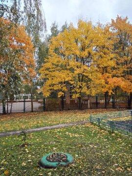 Елецкая 31к1 - Фото 3