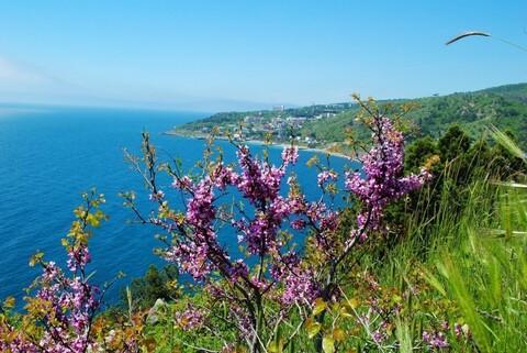 Продам новый дом 400 кв.м. на побережье Азовского моря - Фото 1