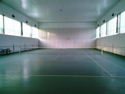 Закрытый теннисный корт действующий бизнес в Цаицырно ул. Кристаль - Фото 1