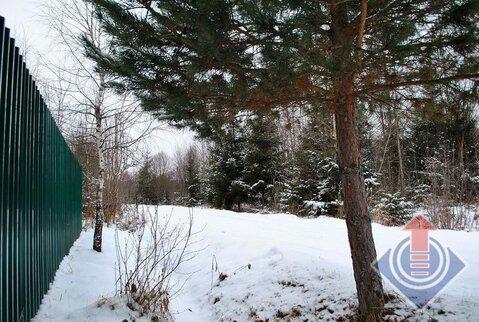 Участок 9 соток в СНТ Купелицы у д. Купелицы - Фото 1