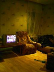 Аренда комнаты, Шуя, Шуйский район, Ул. Васильевская - Фото 2