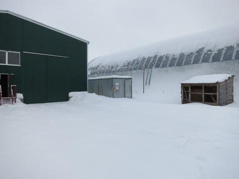 Сдам склад, гараж, ангар неотапливаемый Михайловское ш.(заправкатнк) - Фото 3