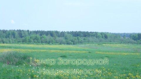 Участок, Волоколамское ш, Новорижское ш, 65 км от МКАД, Новопетровское . - Фото 3