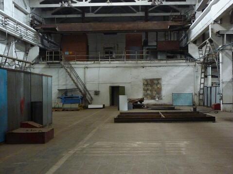 Производственное помещение в аренду - Фото 5