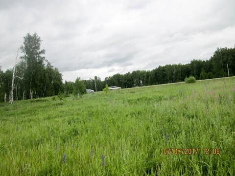 Земельный участок в Долгодеревеском Сосновского района - Фото 2