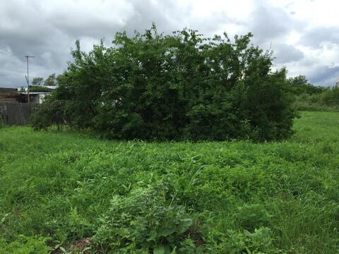 Продается земельный участок, с. Ракитное, ул. Шефская - Фото 4