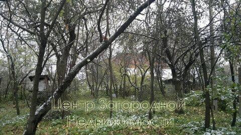 Участок, Можайское ш, 5 км от МКАД, Мамоново д. (Одинцовский р-н). . - Фото 5