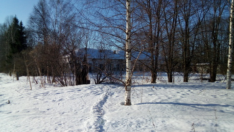 Участок 49 соток в живописном месте Вологодской области - Фото 2