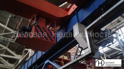 Сдам в аренду производственный цех в Ижевске - Фото 4