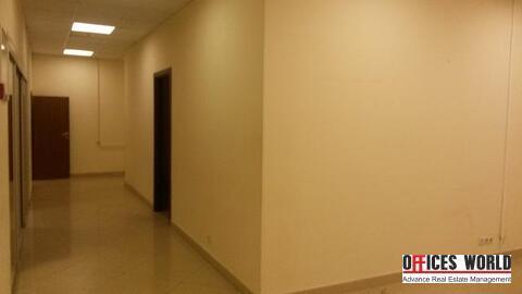 Офис, 37 кв.м. - Фото 3
