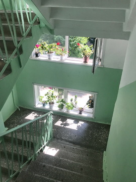 Надоело жить впятером в 1-комнатной квартире, пора переезжать в 3-ком - Фото 3