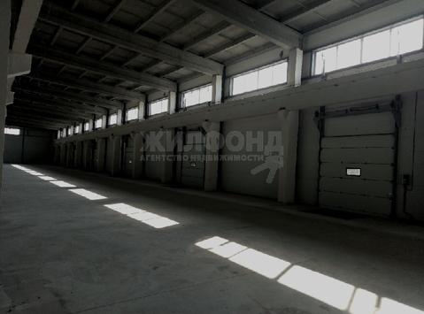 Продажа склада, Новосибирск, Ул. Тухачевского - Фото 5