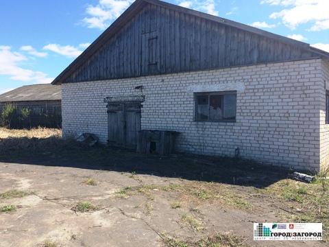 Животноводческая ферма в Семеновском районе - Фото 1