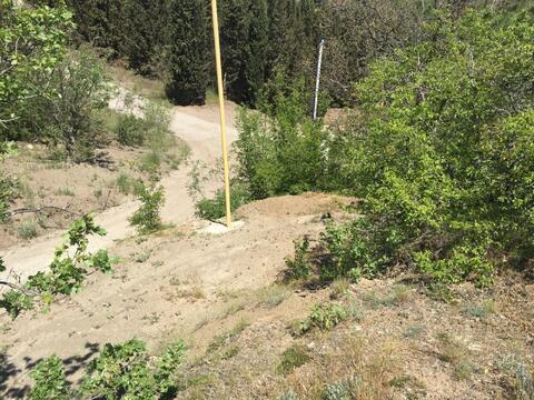 Продам земельный участок в Алуште, Дельфин, до моря 300 м. - Фото 2