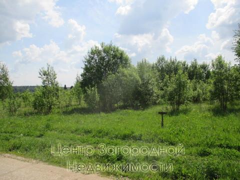 Участок, Ярославское ш, 52 км от МКАД, Репихово п. Ярославское шоссе, . - Фото 2
