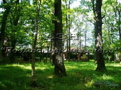 Ленинградское ш. 8 км от МКАД, Химки, Участок 21 сот. - Фото 1
