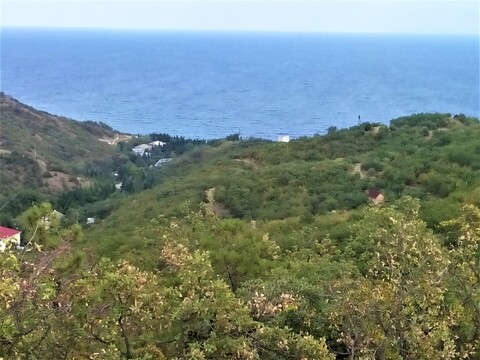 Продам участок 1,27 га г. Алушта, с. Семидворье 650 м от моря - Фото 1